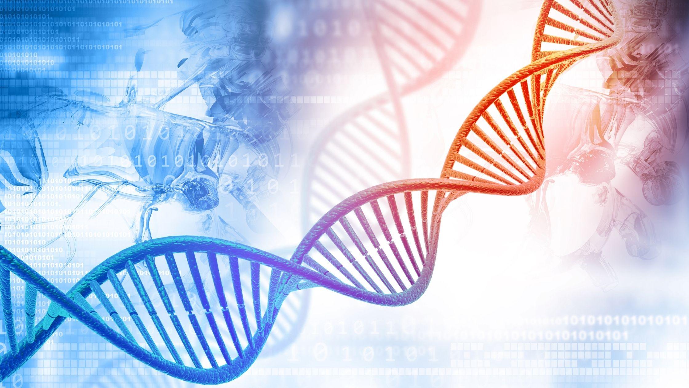 Il grande abbaglio del DNA