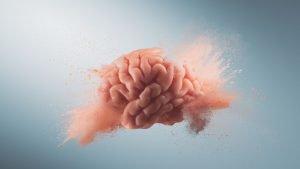 potenzialità del cervello